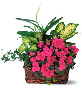 Flower Baskets & Bouquets