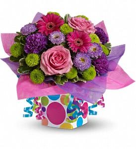 confetti-present-birthday-congratulations