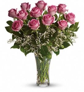 make-me-blush-dozen-long-stemmed-pink-roses