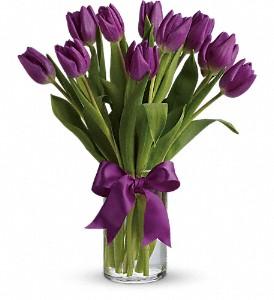 passionate-purple-tulips-vase