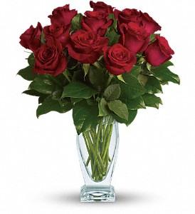 rose-classique-dozen-red-roses