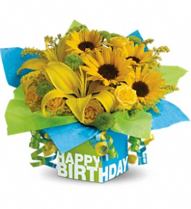 sunny-birthday-present